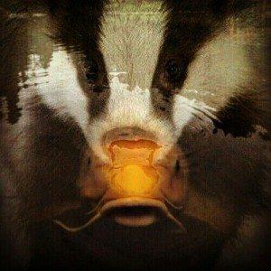 badger vs salmon