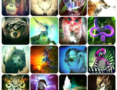 Your Spirit Animal